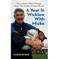 Year in Wicklow with Micko (BOK)
