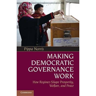 Making Democratic Governance Work (BOK)