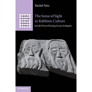 The Sense of Sight in Rabbinic Culture: Jewish Ways of Seeing in Late Antiquity (BOK)