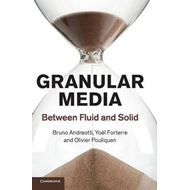 Granular Media: Between Fluid and Solid (BOK)