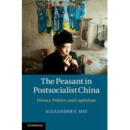 Peasant in Postsocialist China: History, Politics and Capitalism (BOK)