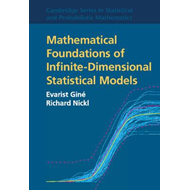 Mathematical Foundations of Infinite-Dimensional Statistical (BOK)