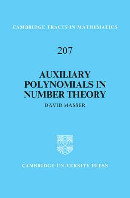 Auxiliary Polynomials in Number Theory (BOK)