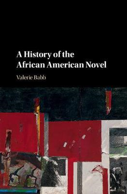 History of the African American Novel (BOK)