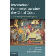 International Economic Law after the Global Crisis (BOK)