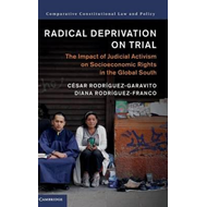 Radical Deprivation on Trial (BOK)