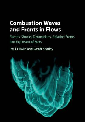 Combustion Waves and Fronts in Flows (BOK)