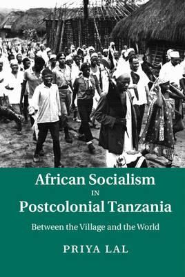 African Socialism in Postcolonial Tanzania (BOK)