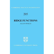 Cambridge Tracts in Mathematics (BOK)