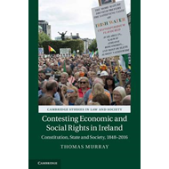 Contesting Economic and Social Rights in Ireland (BOK)