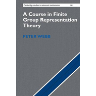 Course in Finite Group Representation Theory (BOK)