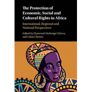 Protection of Economic, Social and Cultural Rights in Africa (BOK)