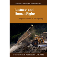 Business and Human Rights (BOK)