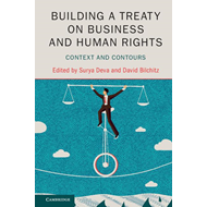 Building a Treaty on Business and Human Rights (BOK)
