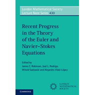 Recent Progress in the Theory of the Euler and Navier-Stokes (BOK)