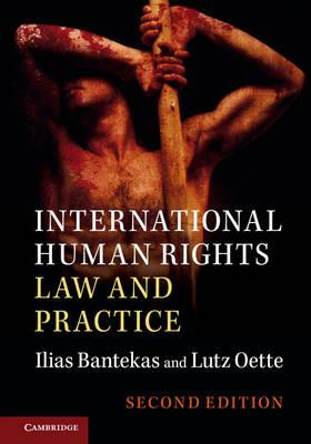 International Human Rights Law and Practice (BOK)
