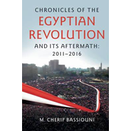 Chronicles of the Egyptian Revolution and its Aftermath: 201 (BOK)