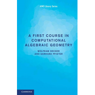 First Course in Computational Algebraic Geometry (BOK)