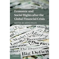Economic and Social Rights after the Global Financial Crisis (BOK)