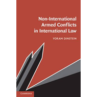Non-International Armed Conflicts in International Law (BOK)