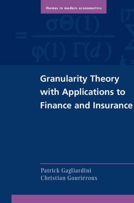 Granularity Theory with Applications to Finance and Insuranc (BOK)
