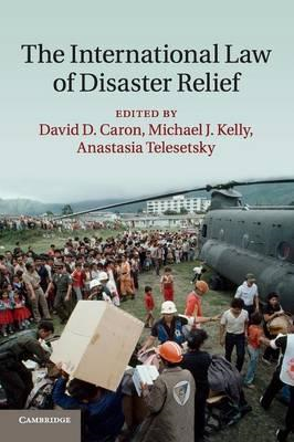 International Law of Disaster Relief (BOK)