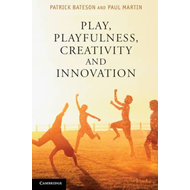 Play, Playfulness, Creativity and Innovation (BOK)