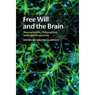 Free Will and the Brain (BOK)