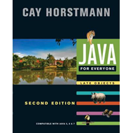 Java for Everyone (BOK)