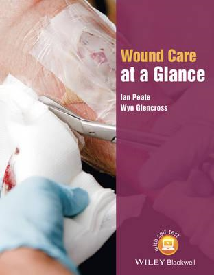 Wound Care at a Glance (BOK)