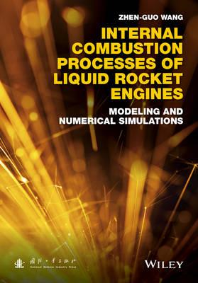 Internal Combustion Processes of Liquid Rocket Engines (BOK)