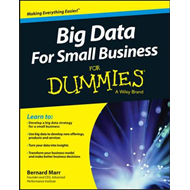 Big Data for Small Business for Dummies (BOK)