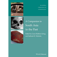 Companion to South Asia in the Past (BOK)