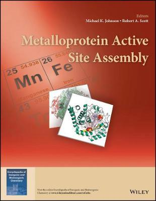 Metalloprotein Active Site Assembly (BOK)