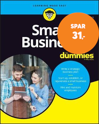 Small Business For Dummies (BOK)
