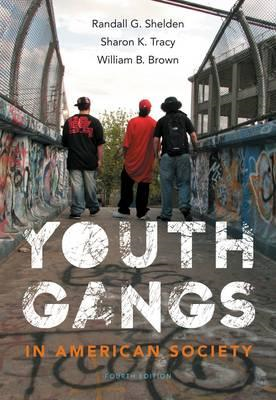 Youth Gangs in American Society (BOK)