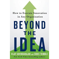 Beyond the Idea (BOK)