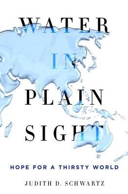 Water in Plain Sight (BOK)