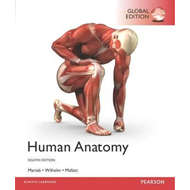 Human Anatomy, Global Edition (BOK)