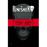 Punisher Vol. 1: On The Road (BOK)