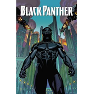 Black Panther: A Nation Under Our Feet Book 1 (BOK)
