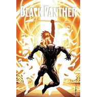 Black Panther: A Nation Under Our Feet Book 2 (BOK)