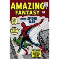 Amazing Spider-man Omnibus Vol. 1, The (new Printing) (BOK)