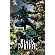 Black Panther: Panther's Quest (BOK)
