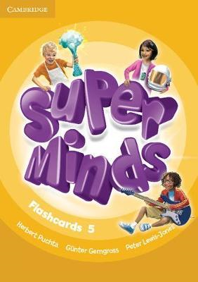 Super Minds Level 5 Flashcards (Pack of 93) (BOK)