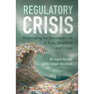 Regulatory Crisis (BOK)