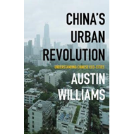China's Urban Revolution (BOK)