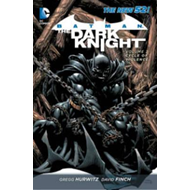 Batman the Dark Knight (BOK)