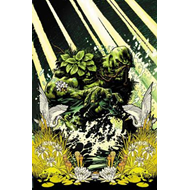 Swamp Thing By Scott Snyder Deluxe Edition (BOK)