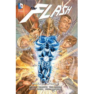 Flash Vol. 7 (BOK)